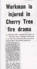 Cherry tree fire drama