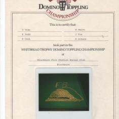 Domino Challenge 1983