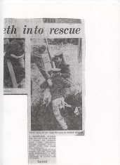 Moss Street Dog Rescue